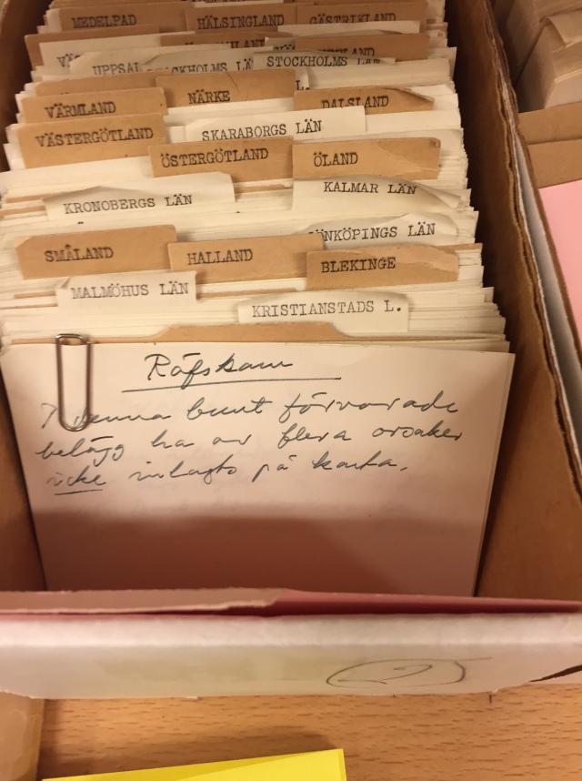 arkiv