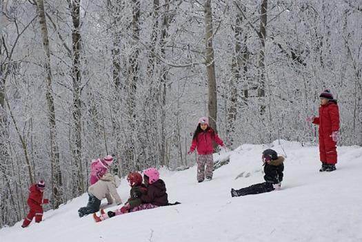 Vinterbild från norra Botkyrka (Alby)