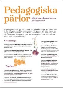 Bild av pdf Pedagogiska pärlor november 2020